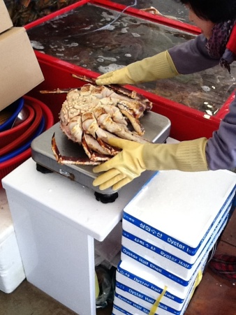 A massive crab in the Busan Fish Market