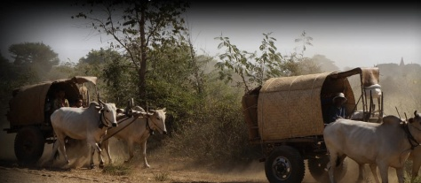 A little Burmese scene on the side of the road