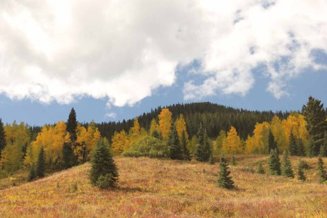 The Colorful Fall Foliage and Big Fluffy Clouds of Crested Butte, CO