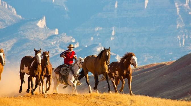 Top Dude Ranches for The Ultimate Escape