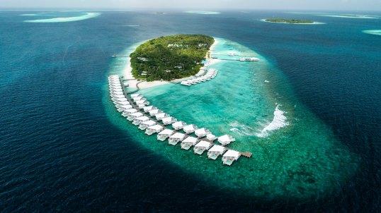 phi phi island shifaaz-shamoon