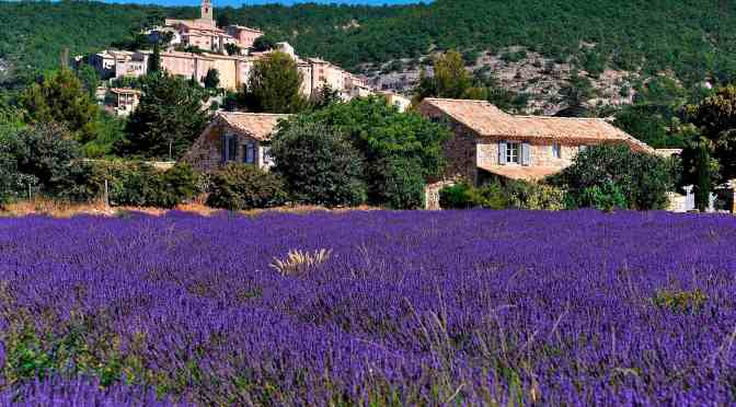 Discovering Provence: The French Riviera